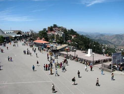 gleeful-shimla-and-manali