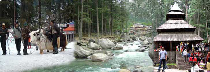 Tourist places in shimla manali : Places to visit in manali tourist attraction